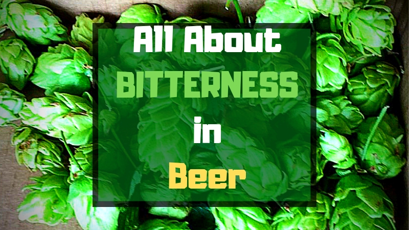 All About IBUs, Hops, and Bitterness In Beer - BrÜcrafter